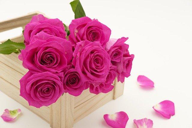 Hadiah Kado Pernikahan Untuk Istri